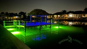 Double HIGH POWERED green underwater fishing light ! HID bulbs