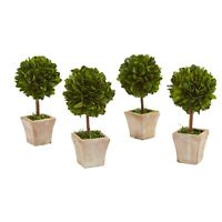 "6"" Boxwood Topiary Preserved Plant In Ceramic Planter (Set Of 4)"