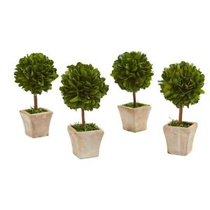 "6"" Boxwood Topiary Preserved Plant In Ceramic Planter (Set Of 4)"