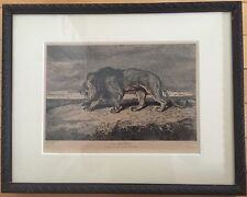Antoine Louis Barye - 1877 Lion Marchant Etching Drypoint Print Framed
