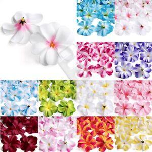 50pcs Artificial Plumeria Frangipani Flower Heads Hawaiian Wedding Party Beach