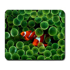 Cute Clown Fish Pair Mouse Pad MP584