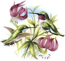 Hummingbird Bird Pink Fuchsia Flower Select-A-Size Waterslide Ceramic Decals