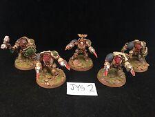 Warhammer Space Marines Dark Angels Pro Painted