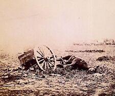 Artillery Caisson Dead Horse Gettysburg July 1863 New 8x10 US Civil War Photo