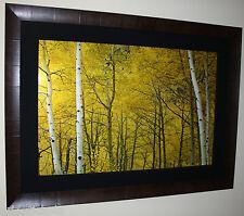 Peter Lik Yellow 1.5M Cigar Leaf Frame Over $10,000 Value