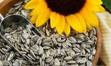Roasted Salted Sunflower Seeds 1kg - Buy From Distributor