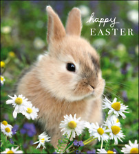 Sweet Bunny Happy Easter Pack Of 5