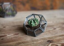 Zinc & Glass Terrarium Planter Diamond Tea Light Holder Lantern Nkuku Aketa