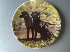 Plates/Spoons Dog Collectables