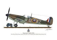 Supermarine Spitfire Aircraft Profile Artwork Bob Doe A3 Glossy Print WW2