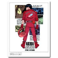 Akira - Red Fighting Anime Art Silk Poster Print Wall Decor 12x18 24x36 inches