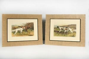 Pair Vtg George Wright Matted Prints Hunting Dogs Irish Setter English Pointer