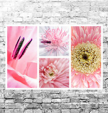 STUNNING PINK FLORAL COLLAGE CANVAS #3 QUALITY PINK FLOWERS A1 CANVAS HOME DECOR