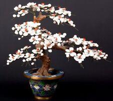 China 20. Jh. -A Chinese Cloisonné Jardiniere & Jade Tree - Giada Cinese Chinois
