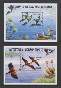 Uganda - 1995, Waterfowl & Wetland Birds sheets x 2 - MNH - SG MS1458
