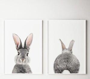 A4 Bunny Nursery Rabbit Animal Prints Wall Decor Art Baby Set Of 2 Front & Back