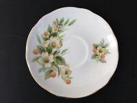 "Vintage DUCHESS Dogwood Fine Bone China SAUCER 5 1/2"" White Gold Foral England"