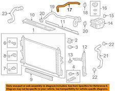 Chevrolet GM OEM 11-15 Cruze 1.4L-L4 Radiator-Upper Inlet Hose 13251447
