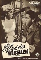 IFB 5838 | LIED DES REBELLEN | Elvis Presley, Hope Lange, Millie Perkins | Top