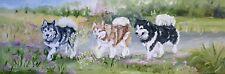 More details for alaskan malamute stunning new original oil painting canvas sandra coen artist