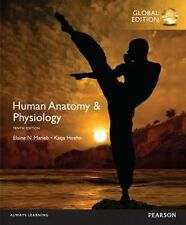 Human Anatomy And Physiology 10th Global Edition By Marieb, Hoehn 9781292096971
