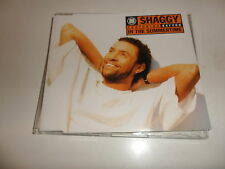 CD Shaggy – in the Summertime