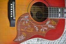 Gitarre Guitar Westerngitarre