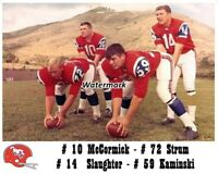 AFL 1966 Denver Broncos Starting Quarterback's Color 8 X 10 Photo Picture