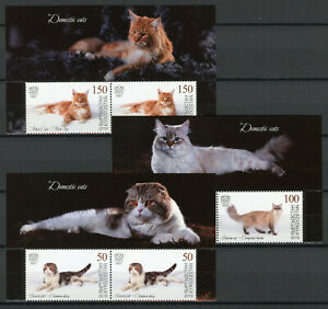 Kyrgyzstan 2019 MNH Domestic Cats Scottish Fold Maine Coon Set in Pairs Stamps