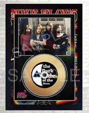 Mini Gold Vinyl CD Pink Floyd David Gilmour Signed Framed Photo Print #9