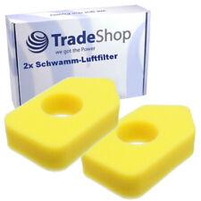 2x Luft-Filter Schwamm für GTM Professional GTM400 P C 3.5 PS B&S
