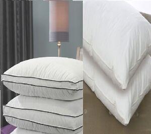 Single Pillow - 100% Goose Down , 40% Goose Down