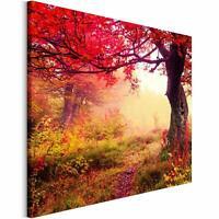 Bilder Leinwandbild Wandbilder Kunstdruck Design Leinwandbild Baum rot Wiese