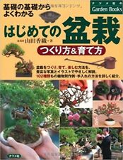 Bonsai How to make bonsai for the first time