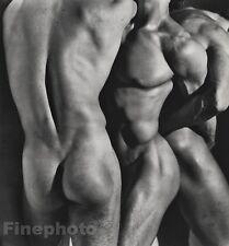 1986 Vintage 16x20 MALE NUDE Torso 3 Men Body Butt Physique Photo Art HERB RITTS