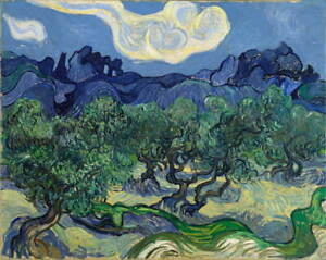 Vincent Van Gogh The Olive Trees Giclee Art Paper Print Poster Reproduction