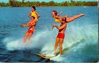 Vintage Postcard Water Ski Show Cypress Gardens Florida  pb30
