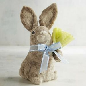 Pier 1 Imports Bunny Boy Natural Holding Flower Tulip Blue Bow Spring New