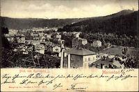 MARIENBAD Mariánské Lázně 1901 alte Postkarte Teilansicht Bliuck vom Egerländer