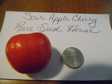 Sour Apple Cherry Tomato Seeds! RARE! AMISH HEIRLOOM! Comb. S/H See our store!