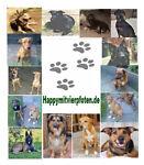 Hundesportartikel-Happymit4pfoten