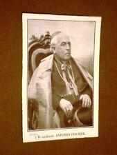Cardinale Anton Hubert Fischer Jülich 1840 – Bad Neuenahr-Ahrweiler 1912