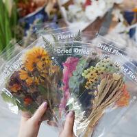 6x Weekend Flower Sticker Scrapbooking Bullet Journal Album DIY Stationery Decor