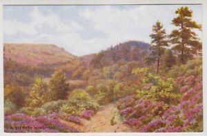 Surrey postcard - A Bye Path Hindhead - ARQ No. 1-60-11-01 (A26)