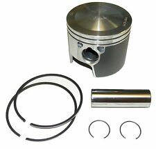 WSM Johnson / Evinrude 185-250 Hp 6 Cyl.  Piston Kit 100-125K OE 436860