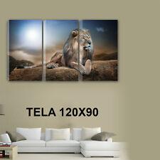 QUADRI MODERNI TELA ARTE 120X90 3PZ ANIMALI LEONE RE DELLA FORESTA LUNA PIENA