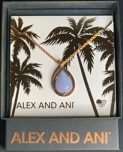 ALEX AND ANI Blue Lace Agate Gemstone 19 in. Adjustable Necklace (MSRP: $148)