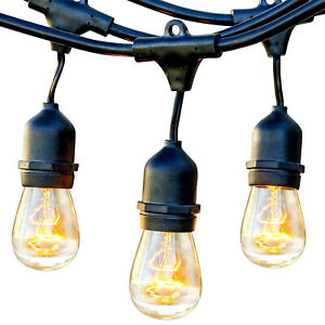 Brightech Ambience Pro Edison White Waterproof Outdoor String Lights, 48 Ft.