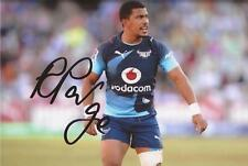 VODACOM BLUE BULLS RUGBY UNION: RUDY PAIGE SIGNED 6x4 ACTION PHOTO+COA